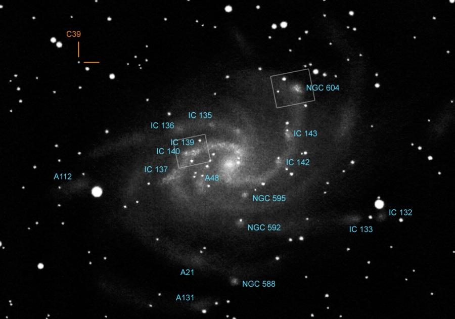 Mély-ég objektumok az M 33-ban: csillagkeletkezési területek, asszociációk és egy gömbhalmaz.
