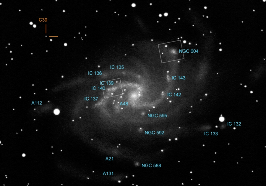 Deep-sky objects in M 33: star forming regions, associations and a globular cluster.