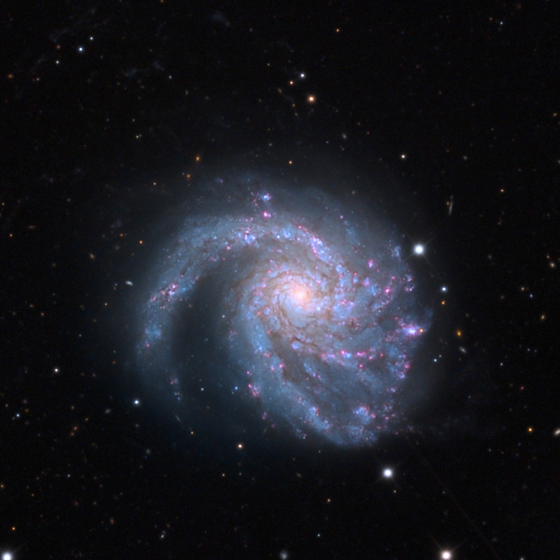 Photo of the spiral galaxy M 99 by Adam Block.