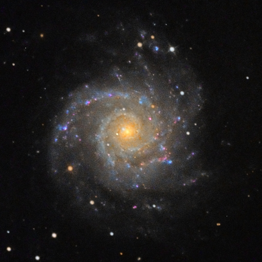 "László Szeri's photograph of M 74 made using using his 18"" Newtonian astrograph."